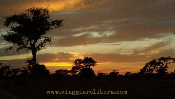 Savana Senegal