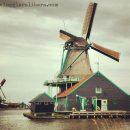 I mulini a vento: come funzionano, cosa producono e quali visitare in Olanda