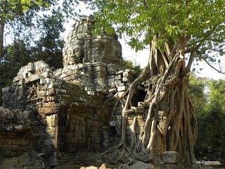 Templi di Angkor