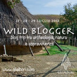 Banner-blogger-Wild-Blogger-grande
