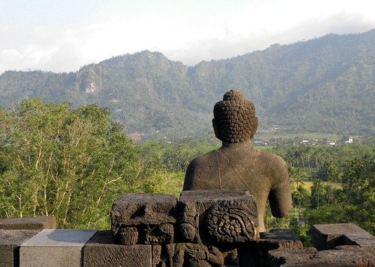 Budda che osserva