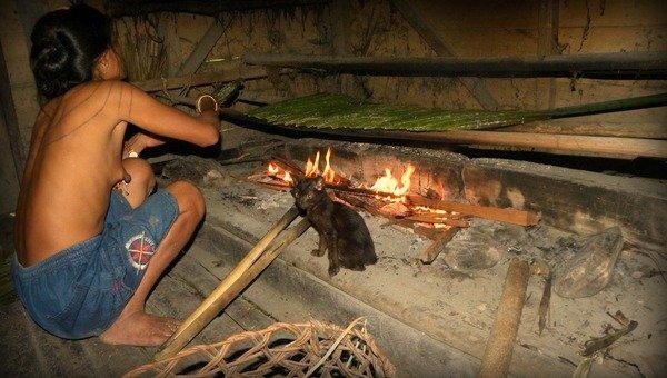 Cooking sagu mentawai