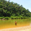 Il Teman Negara: una foresta di 130 milioni di anni (Malesia)