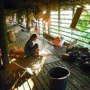 Le longhouses del Borneo (Kalimantan, Indonesia)