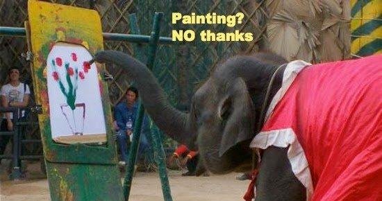 Spettacoli con elefanti