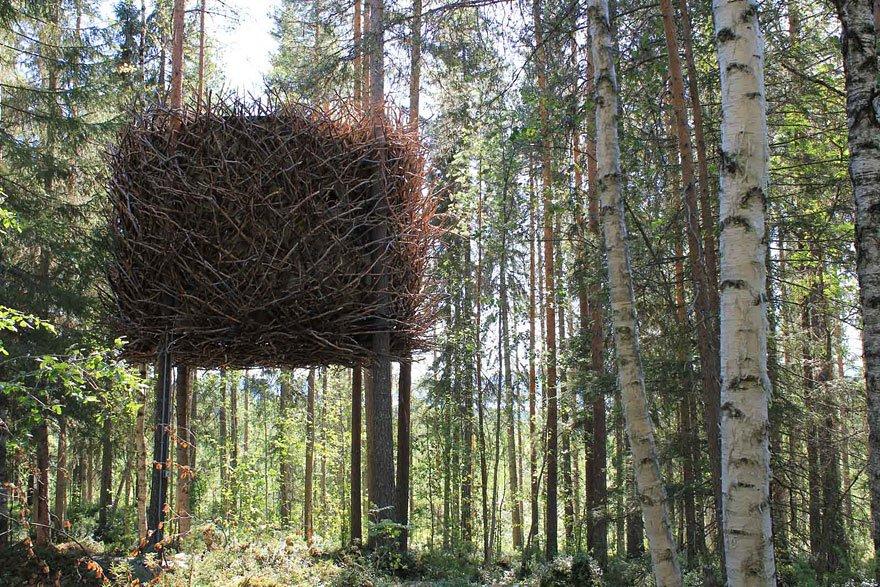 Dormire nelle case sugli alberi - Casa sugli alberi ...
