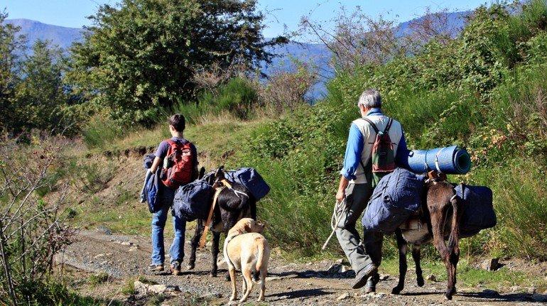Trekking con gli asini Festival del Turismo Responsabile