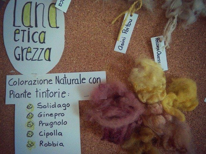 Colorazione naturale della lana