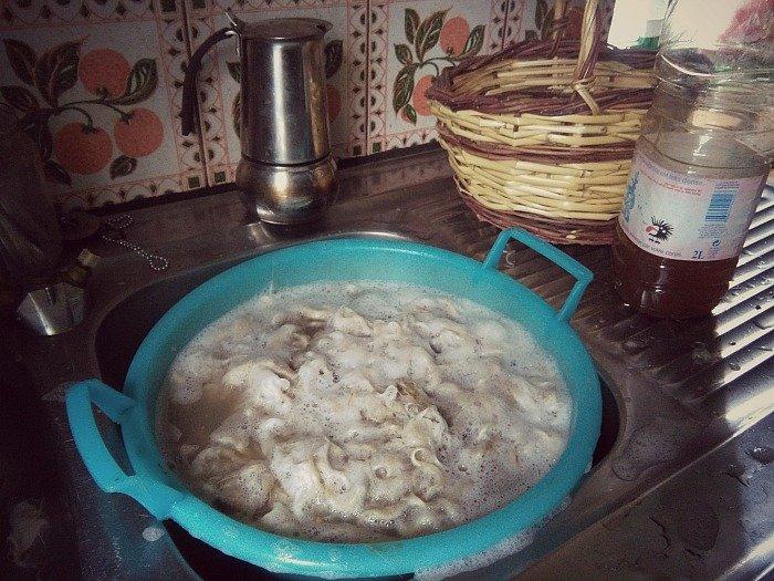 Lavaggio della lana