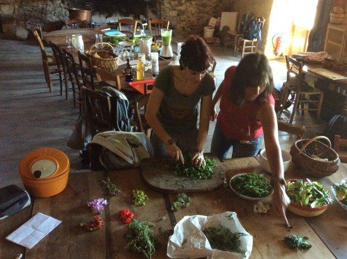 preparazione erbe