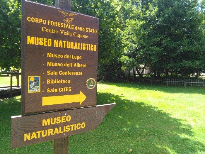 cartelli museo naturalistico