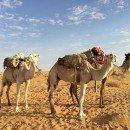 Capodanno in Mauritania: itinerario di viaggio