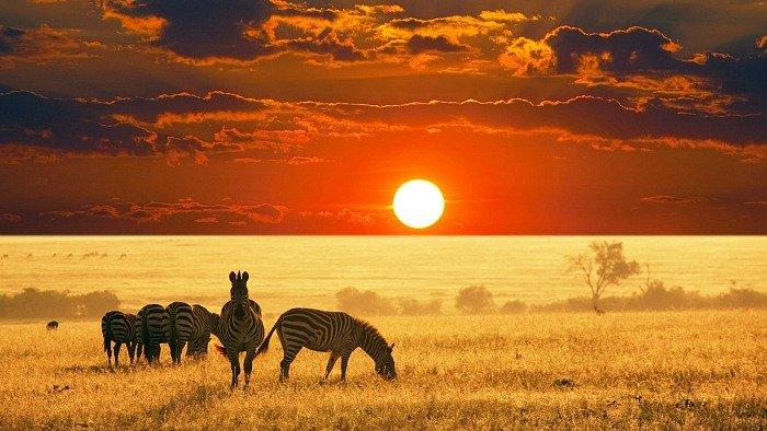 sud-africa-safari-sostenibile