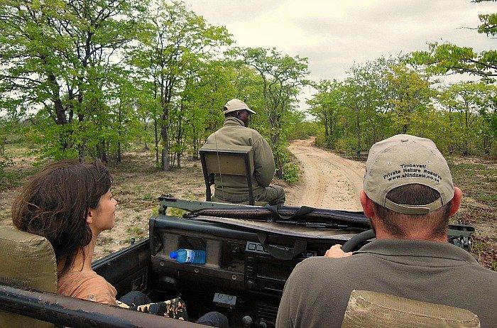 safari-al-kruger-sud-africa