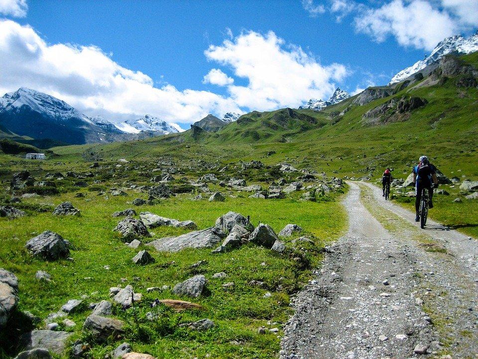 bici da trekking