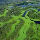 Amazzonia, Brasile – Partenze 2018