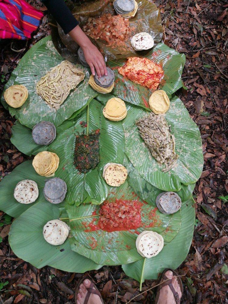 cibo elva Guatemala-min