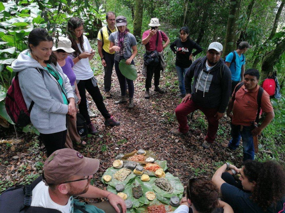 gruppo selva Guatemala -min