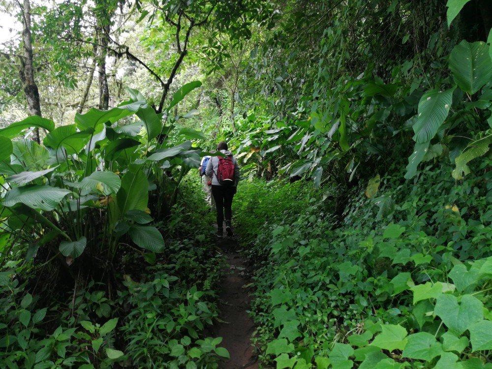 trekking Guatemala-min