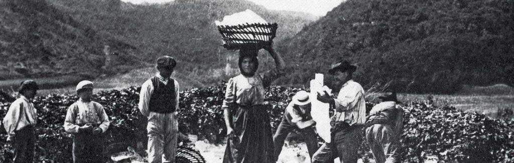 foto antica lavoratori ghiacciaie Pistoia
