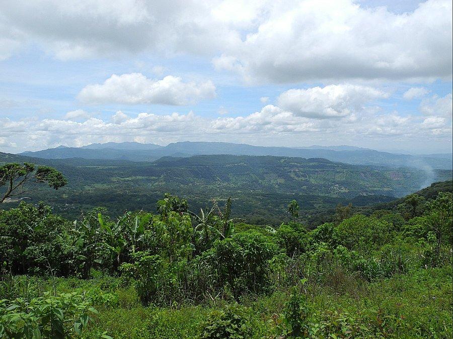 LA PATASTA Nicaragua