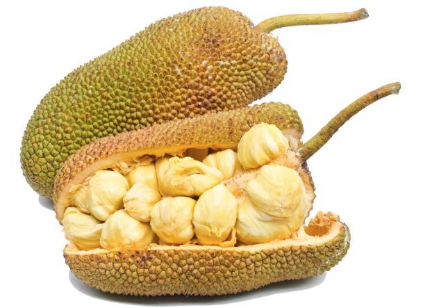 Polpa Jackfruit