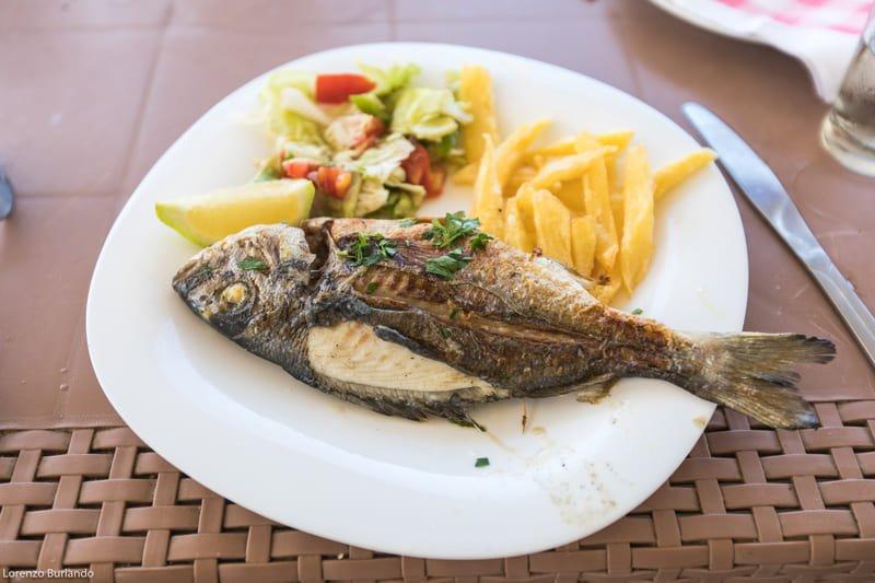 Pesce Tunisia
