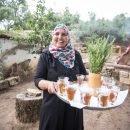 Itinerario di ecoturismo nel nord della Tunisia