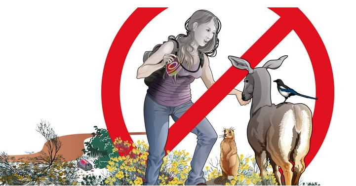 NON DARE DA MANGIARE AGLI ANIMALI SELVATICI