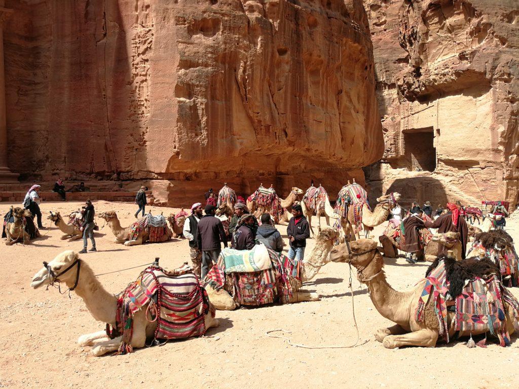 Petra Viaggi Giordania