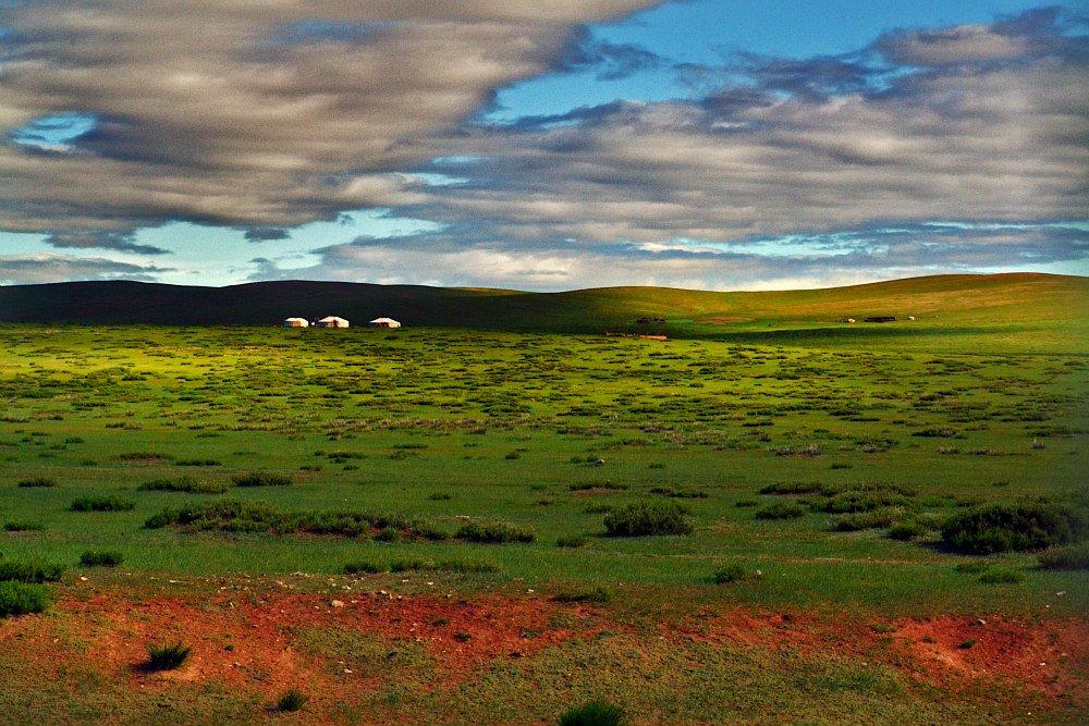 Steppa Mongolia