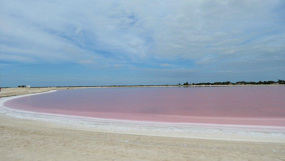 Messico Lago rosa Rio Lagartos
