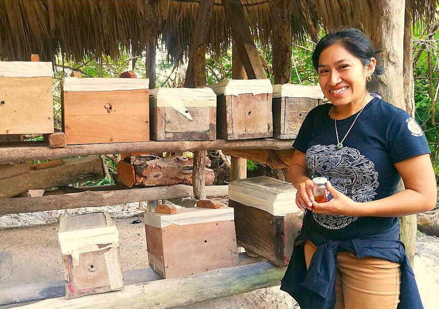 Produzione miele villaggio Messico