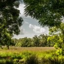 Ecoturismo in Toscana: itinerari consigliati per fare trekking