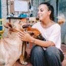 Volontariato con cani e gatti in Malesia