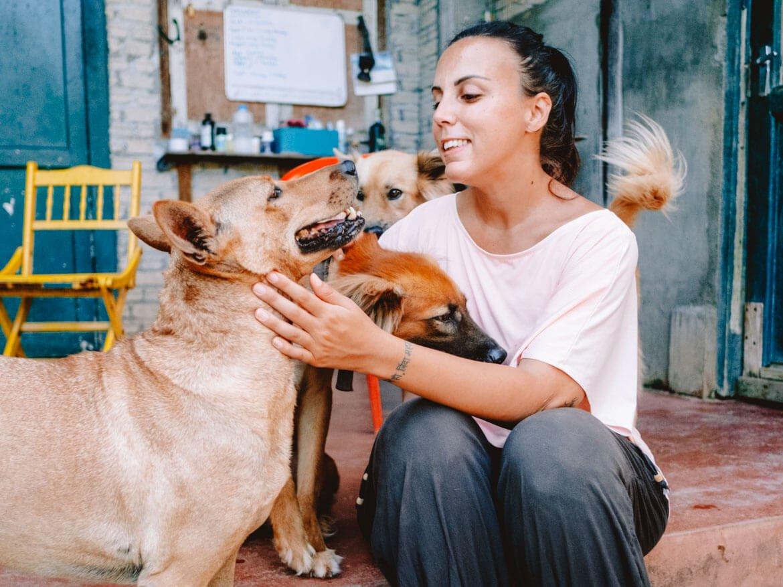 Volontariato animali Asia