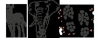 Viaggio safari in Africa